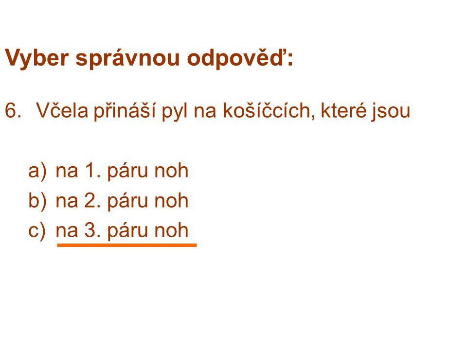 Vyber správnou odpověď: 6.Včela přináší pyl na košíčcích, které jsou a)na 1.