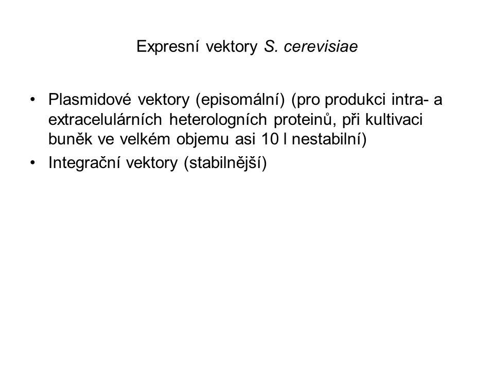 Expresní vektory S. cerevisiae Plasmidové vektory (episomální) (pro produkci intra- a extracelulárních heterologních proteinů, při kultivaci buněk ve