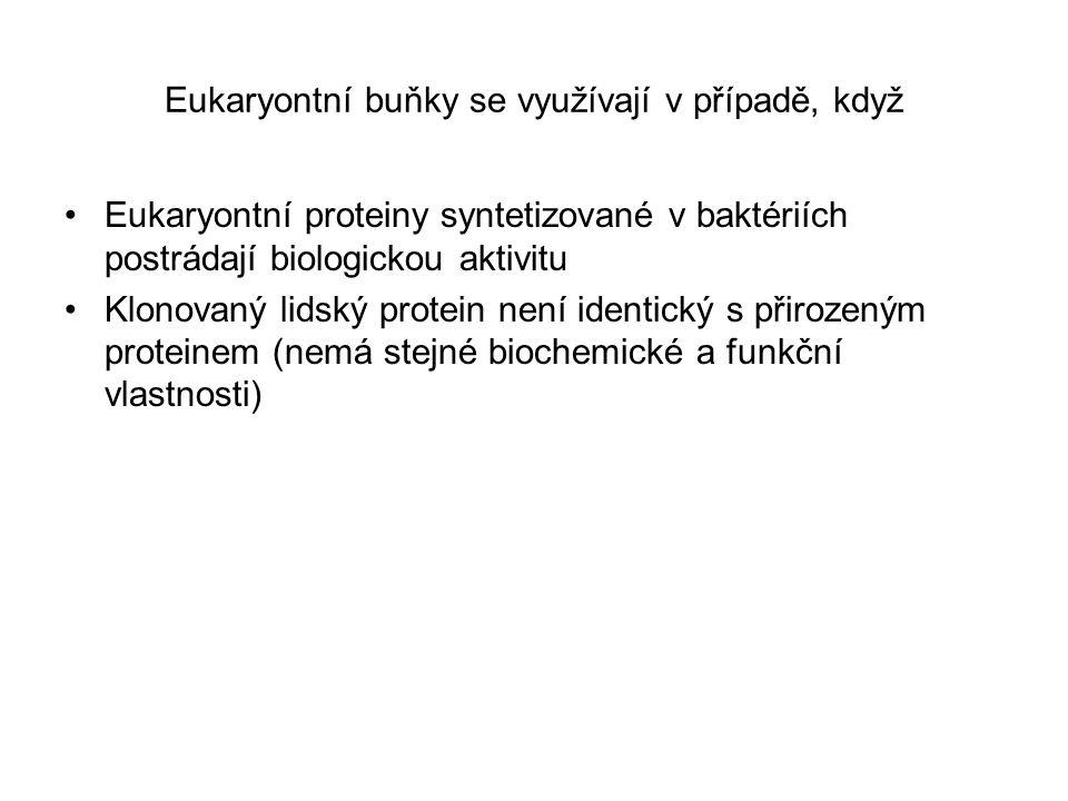 Eukaryontní buňky se využívají v případě, když Eukaryontní proteiny syntetizované v baktériích postrádají biologickou aktivitu Klonovaný lidský protei
