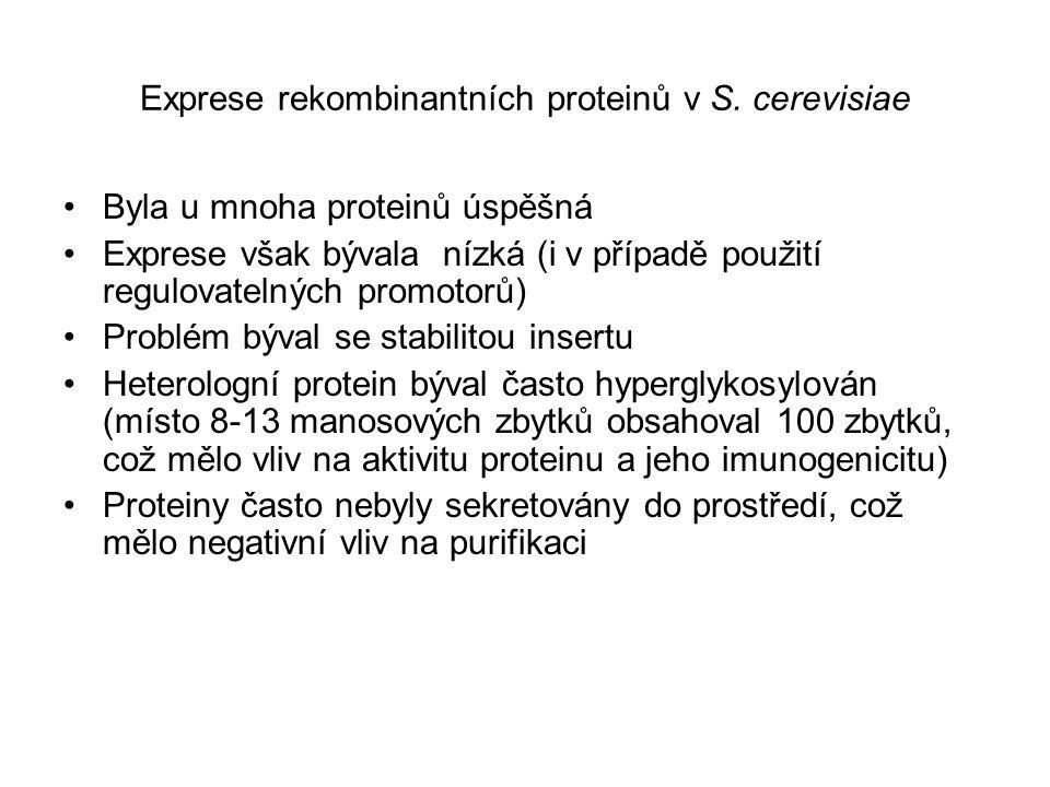 Exprese rekombinantních proteinů v S. cerevisiae Byla u mnoha proteinů úspěšná Exprese však bývala nízká (i v případě použití regulovatelných promotor
