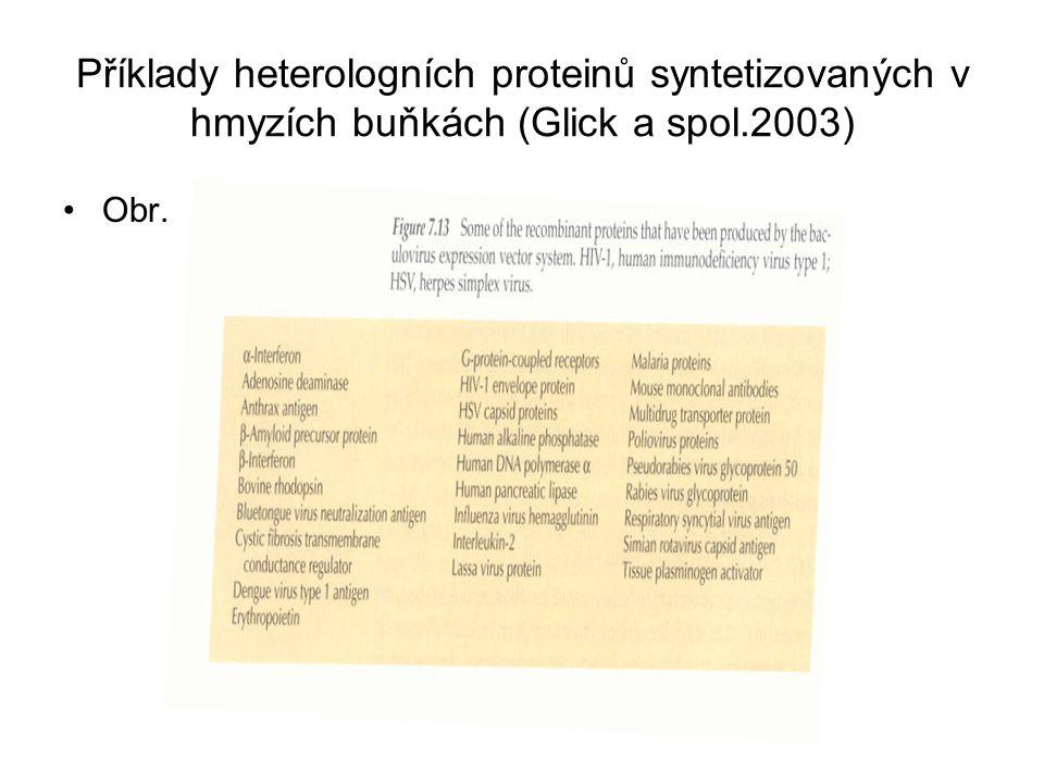 Příklady heterologních proteinů syntetizovaných v hmyzích buňkách (Glick a spol.2003) Obr.