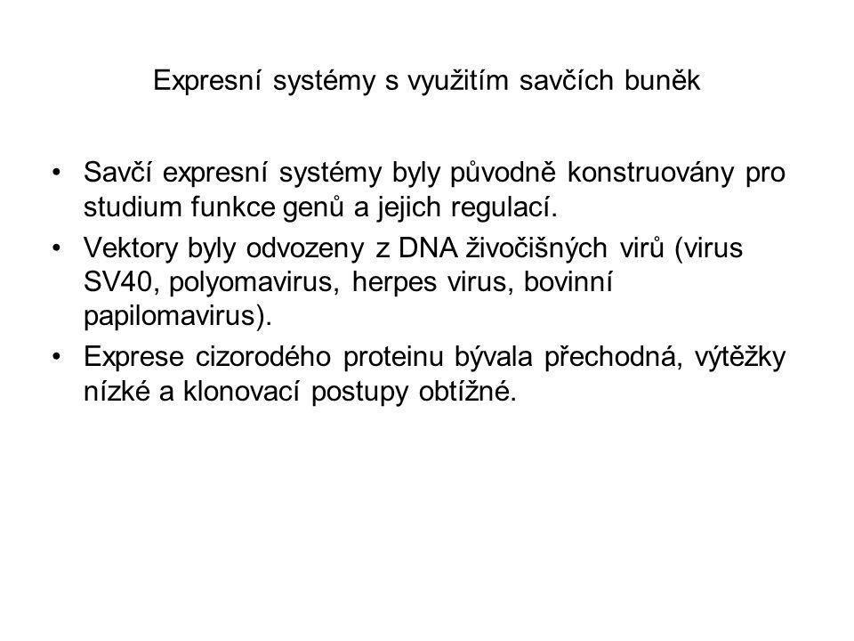 Expresní systémy s využitím savčích buněk Savčí expresní systémy byly původně konstruovány pro studium funkce genů a jejich regulací. Vektory byly odv