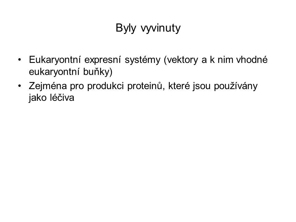 Byly vyvinuty Eukaryontní expresní systémy (vektory a k nim vhodné eukaryontní buňky) Zejména pro produkci proteinů, které jsou používány jako léčiva