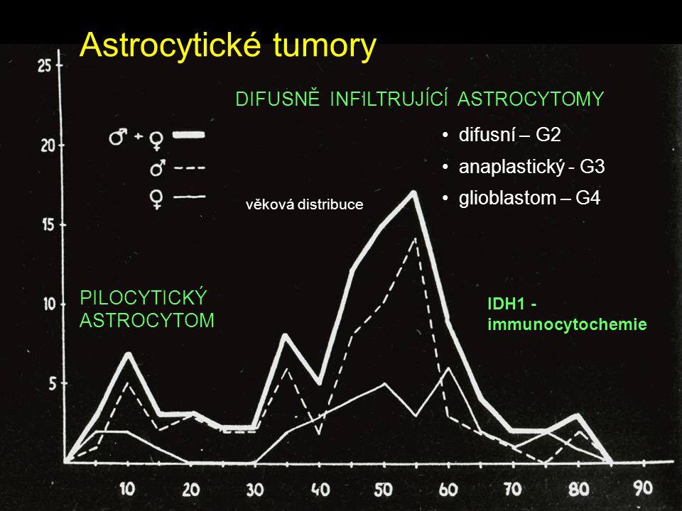 Astrocytické tumory věková distribuce PILOCYTICKÝ ASTROCYTOM DIFUSNĚ INFILTRUJÍCÍ ASTROCYTOMY difusní – G2 anaplastický - G3 glioblastom – G4 IDH1 - i
