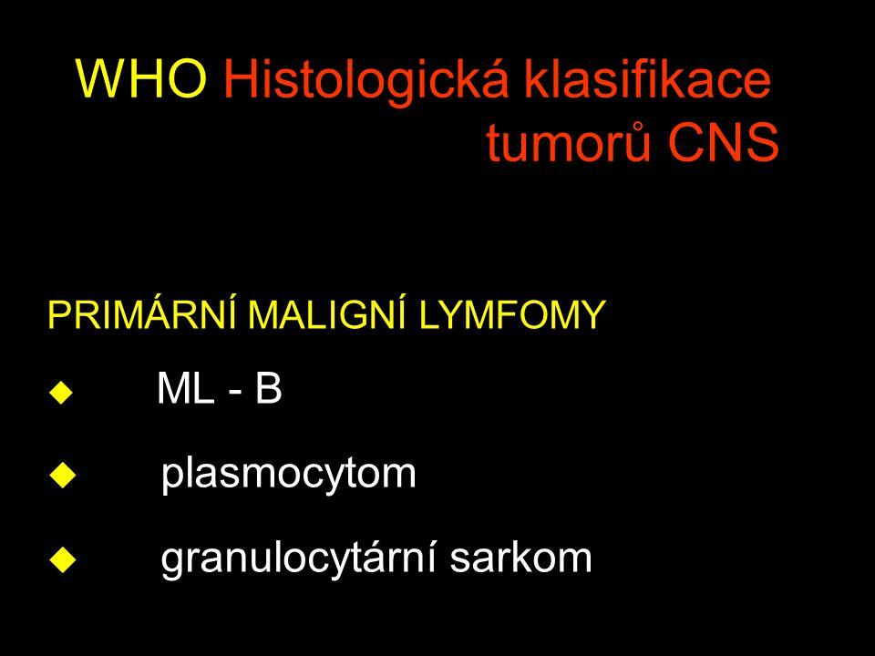 WHO Histologická klasifikace tumorů CNS PRIMÁRNÍ MALIGNÍ LYMFOMY u ML - B u plasmocytom u granulocytární sarkom
