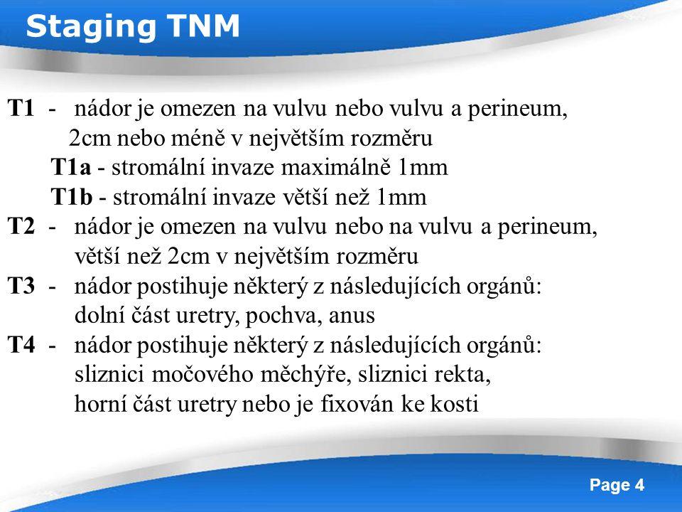 Powerpoint Templates Page 4 T1 - nádor je omezen na vulvu nebo vulvu a perineum, 2cm nebo méně v největším rozměru T1a - stromální invaze maximálně 1m