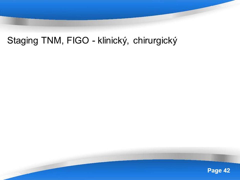Powerpoint Templates Page 42 Staging TNM, FIGO - klinický, chirurgický
