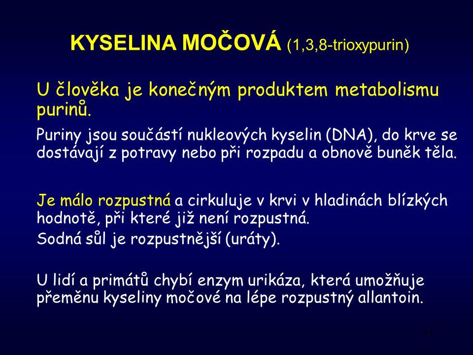 34 KYSELINA MOČOVÁ (1,3,8-trioxypurin) U člověka je konečným produktem metabolismu purinů.