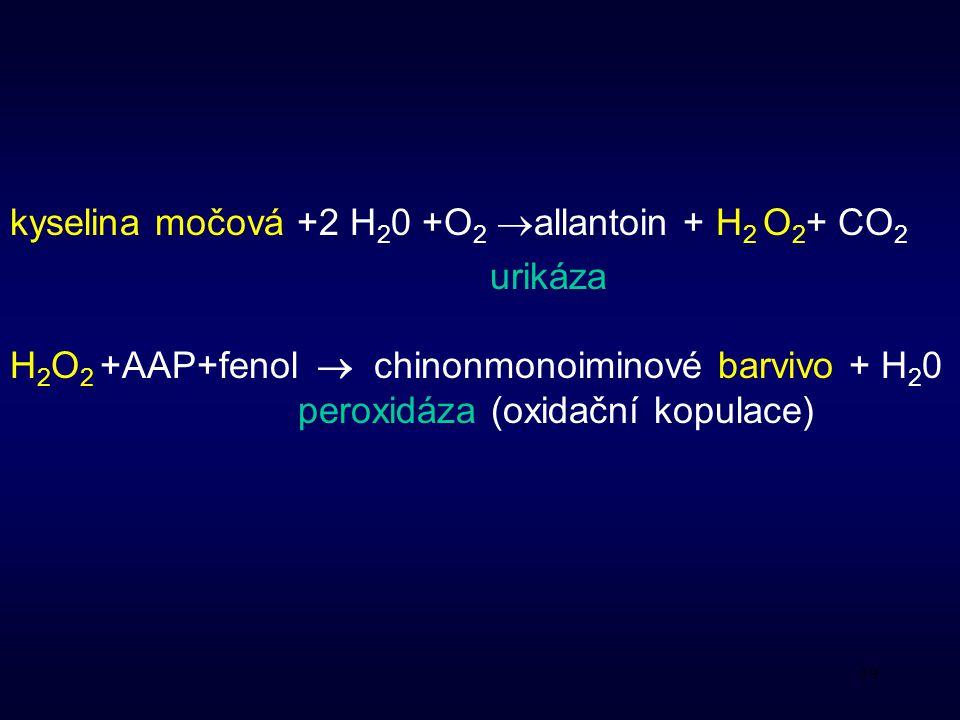 39 kyselina močová +2 H 2 0 +O 2  allantoin + H 2 O 2 + CO 2 urikáza H 2 O 2 +AAP+fenol  chinonmonoiminové barvivo + H 2 0 peroxidáza (oxidační kopulace)