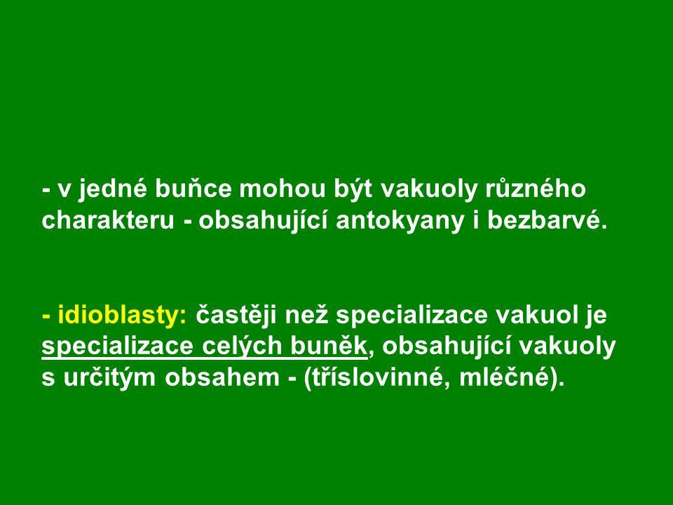 - v jedné buňce mohou být vakuoly různého charakteru - obsahující antokyany i bezbarvé. - idioblasty: častěji než specializace vakuol je specializace