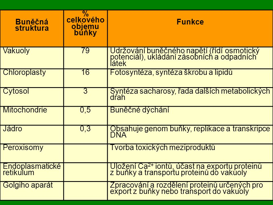 Buněčná struktura % celkového objemu buňky Funkce Vakuoly79 Udržování buněčného napětí (řídí osmotický potenciál), ukládání zásobních a odpadních láte
