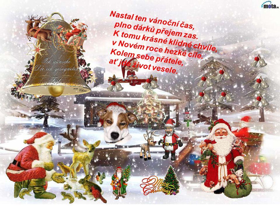 Jen jednou za rok přijdou Vánoce, jen jednou za rok se malý sněhem zachumelený stromeček promění v zářící světélko tichého lidského štěstí. Jen jednou
