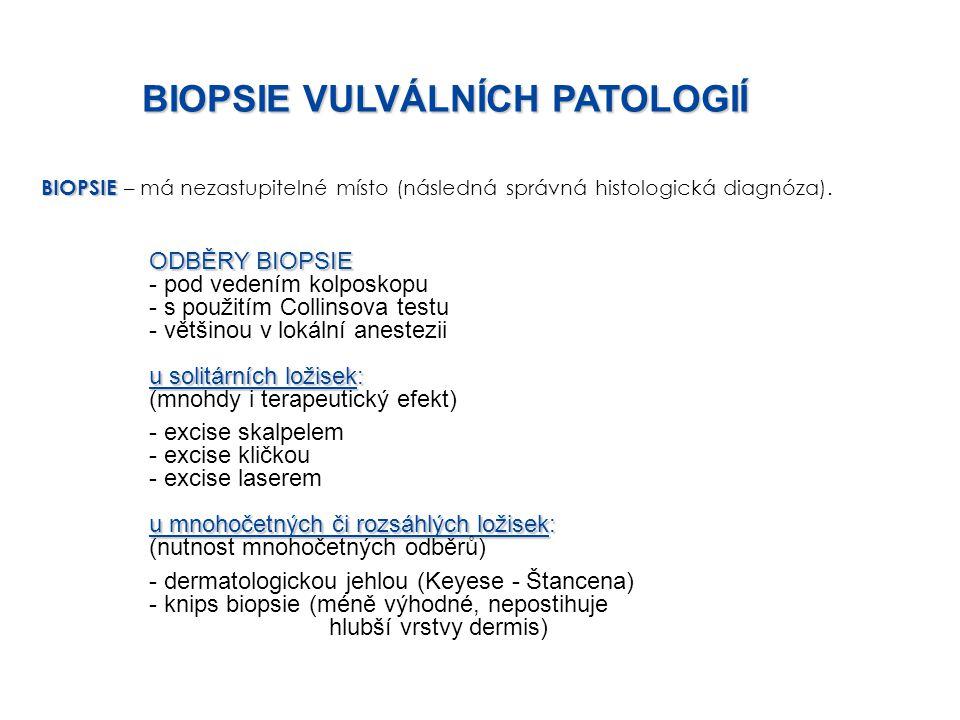 BIOPSIE BIOPSIE – má nezastupitelné místo (následná správná histologická diagnóza). ODBĚRY BIOPSIE - pod vedením kolposkopu - s použitím Collinsova te