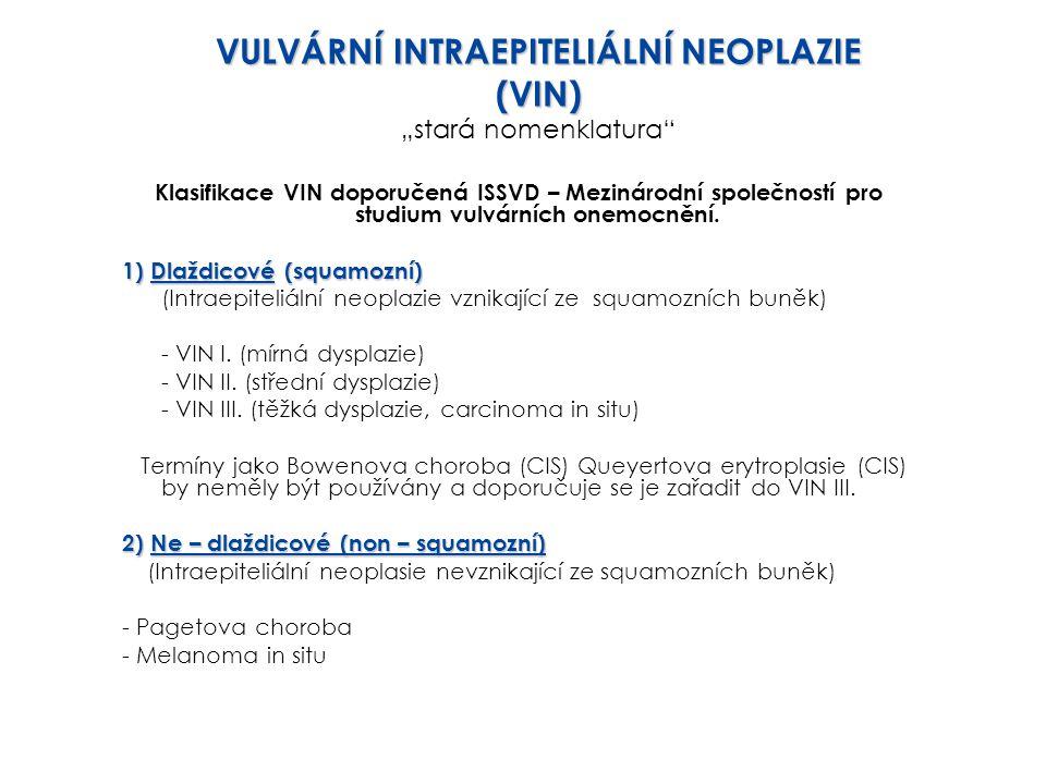 Klasifikace VIN doporučená ISSVD – Mezinárodní společností pro studium vulvárních onemocnění. 1) Dlaždicové (squamozní) (Intraepiteliální neoplazie vz