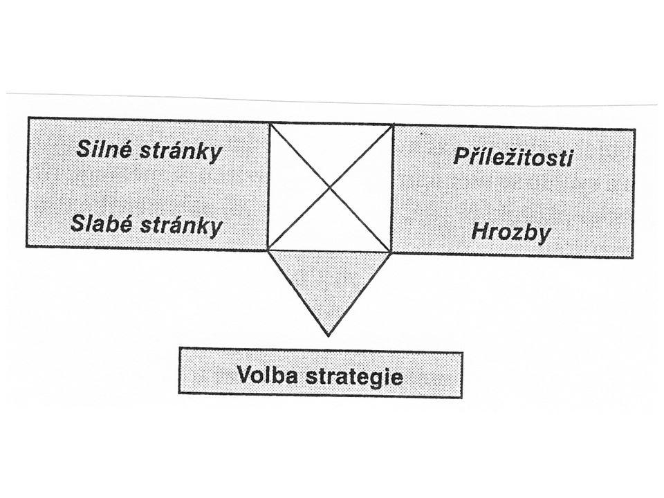 - hodnocení a výběr strategií