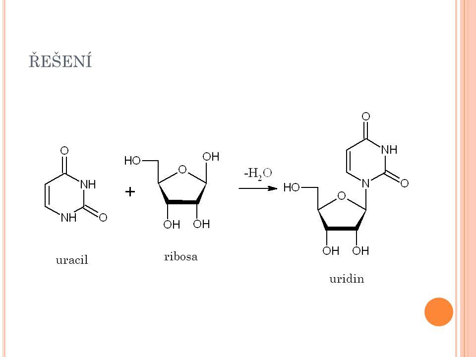 ŘEŠENÍ thymin 2-deoxyribosa 2-deoxythymidin