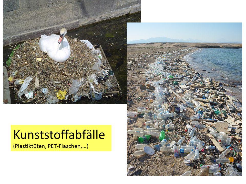 Kunststoffabfälle (Plastiktüten, PET-Flaschen,…)