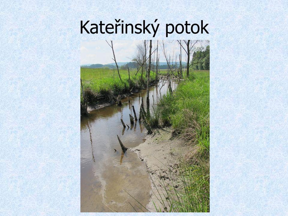 Kateřinský potok
