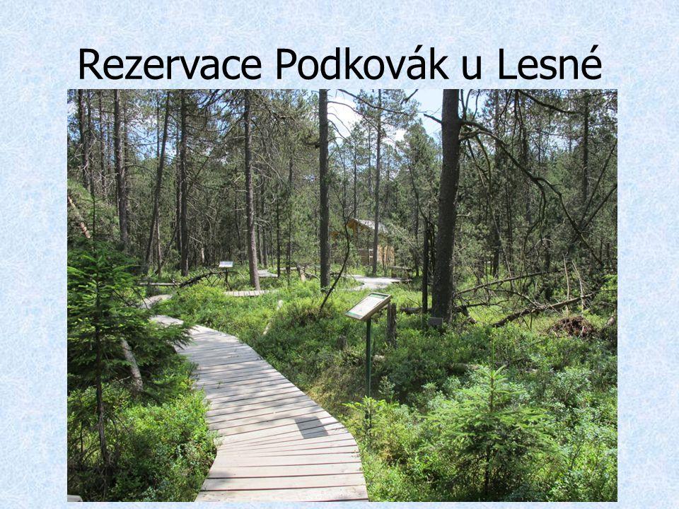 Rezervace Podkovák u Lesné
