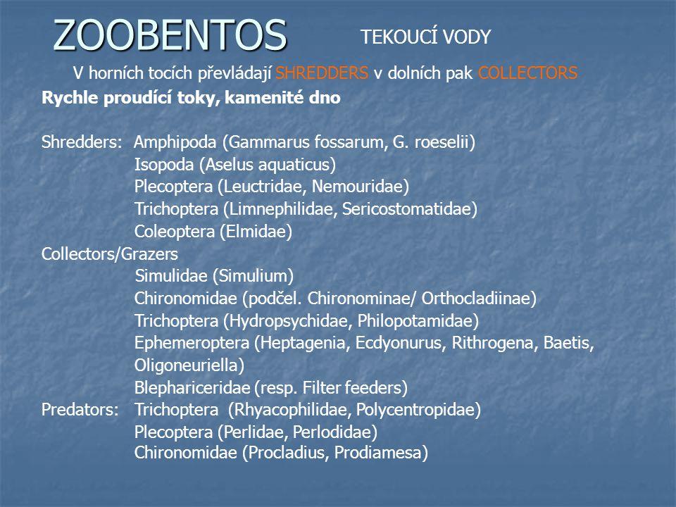 ZOOBENTOS TEKOUCÍ VODY V horních tocích převládají SHREDDERS v dolních pak COLLECTORS Pisčité a bahnité substráty toku Predators: Odonata (Gomphus, Aeschna, Libellula…) Megaloptera (Sialis) Coleoptera (Ditiscus) Trubelaria Hirudinea (Erpobdella, Helobdella) Heteroptera (Micronecta, Aphelocheirus) Collectors/Gatherers/Filter feeders Chironomidae (podčel.