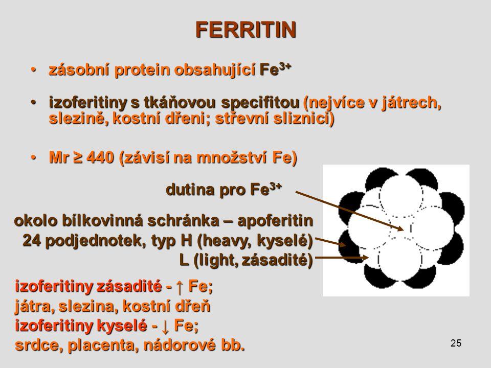 25 FERRITIN zásobní protein obsahující Fe 3+zásobní protein obsahující Fe 3+ izoferitiny s tkáňovou specifitou (nejvíce v játrech, slezině, kostní dře