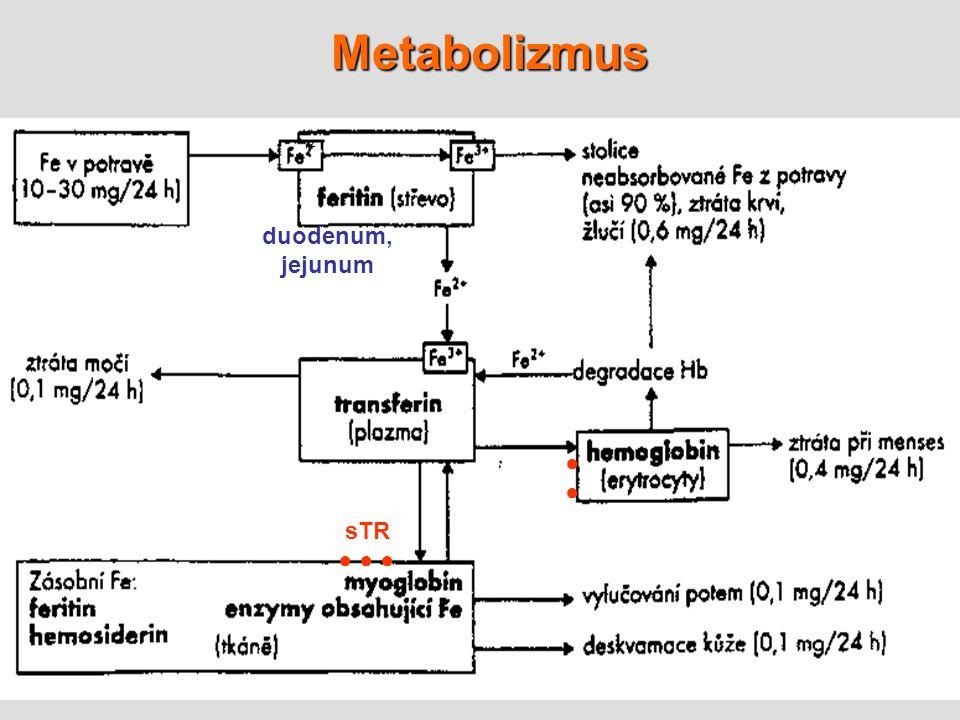 6 Metabolizmus duodenum, jejunum + sTR ● ● ● ●●●●
