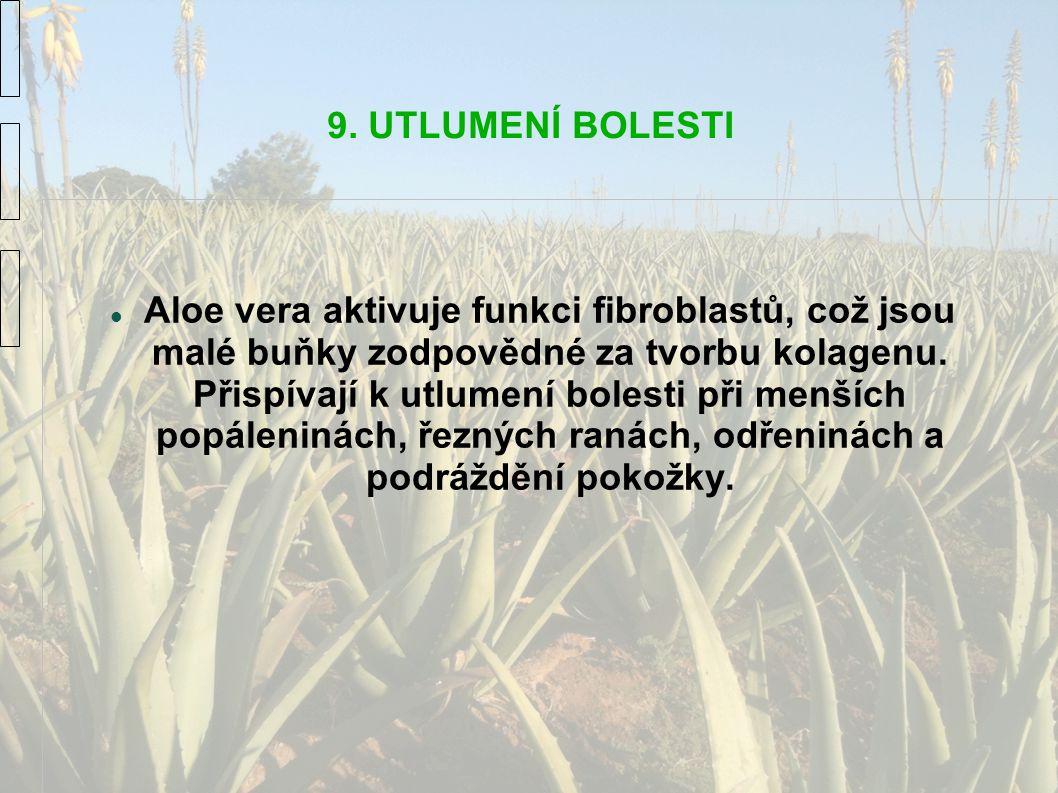 9. UTLUMENÍ BOLESTI Aloe vera aktivuje funkci fibroblastů, což jsou malé buňky zodpovědné za tvorbu kolagenu. Přispívají k utlumení bolesti při menšíc