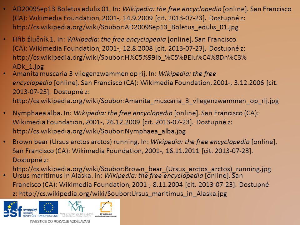 AD2009Sep13 Boletus edulis 01. In: Wikipedia: the free encyclopedia [online]. San Francisco (CA): Wikimedia Foundation, 2001-, 14.9.2009 [cit. 2013-07