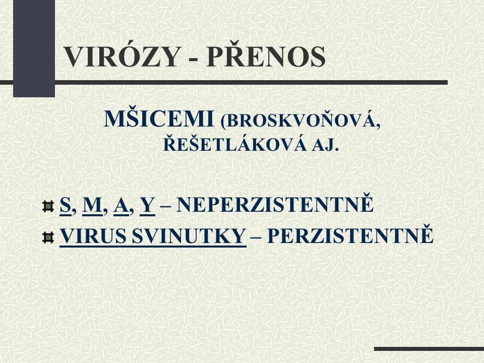 VIRÓZY - PŘENOS MŠICEMI (BROSKVOŇOVÁ, ŘEŠETLÁKOVÁ AJ. S, M, A, Y – NEPERZISTENTNĚ VIRUS SVINUTKY – PERZISTENTNĚ