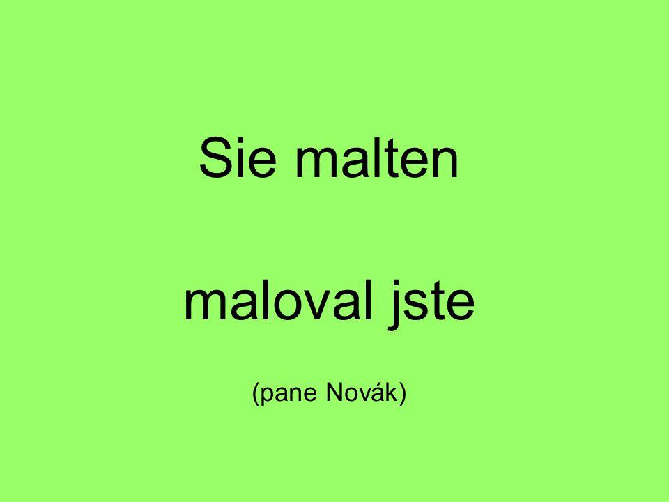 Sie malten maloval jste (pane Novák)