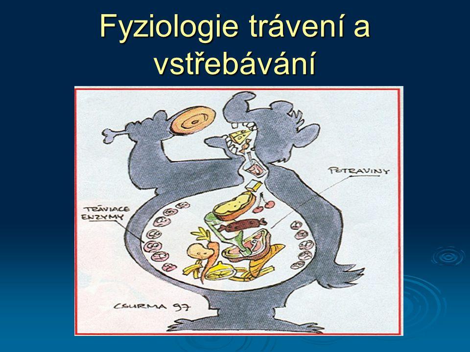 Funkce trávicího ústrojí (GIT - gastrointestinální trakt)  Trávení  mechanické a chemické zpracování potravy  Vstřebávání  přestup látek stěnou GIT do krve  Přeměna a skladování živin  Vylučování  odstraňování nestrávených zbytků potravy a zplodin metabolismu zplodin metabolismu