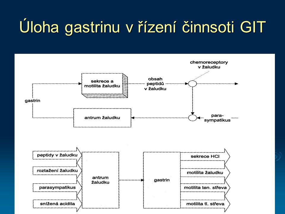 Úloha gastrinu v řízení činnsoti GIT