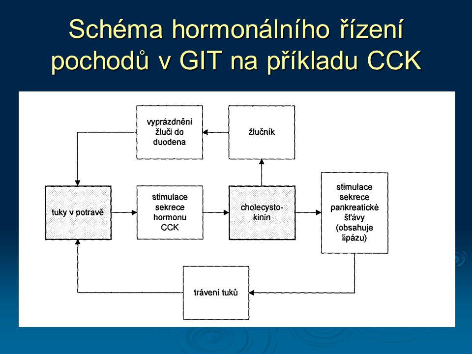 Schéma hormonálního řízení pochodů v GIT na příkladu CCK