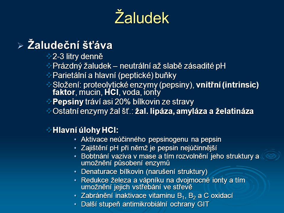 Žaludek  Žaludeční šťáva  2-3 litry denně  Prázdný žaludek – neutrální až slabě zásadité pH  Parietální a hlavní (peptické) buňky  Složení: proteolytické enzymy (pepsiny), vnitřní (intrinsic) faktor, mucin, HCl, voda, ionty  Pepsiny tráví asi 20% bílkovin ze stravy  Ostatní enzymy žal šť.: žal.