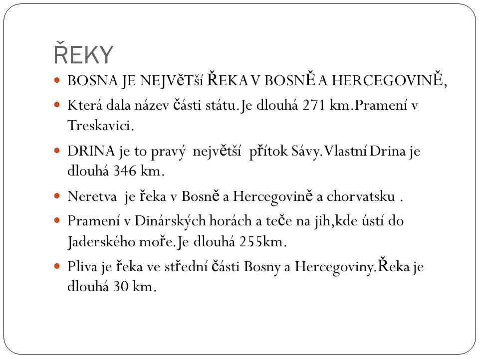 ŘEKY BOSNA JE NEJV ě Tší Ř EKA V BOSN Ě A HERCEGOVIN Ě, Která dala název č ásti státu.Je dlouhá 271 km.Pramení v Treskavici.