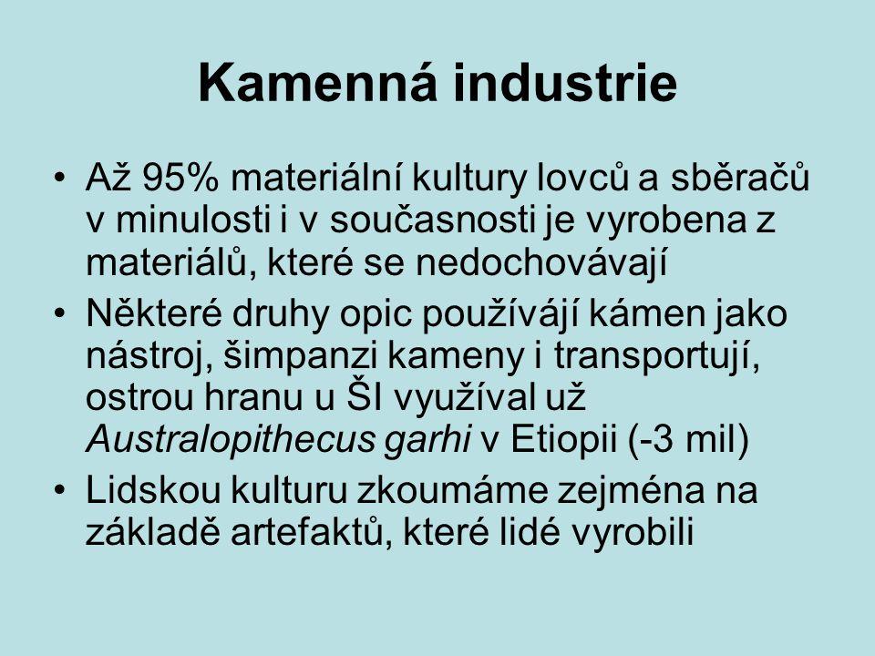 Kamenná industrie Až 95% materiální kultury lovců a sběračů v minulosti i v současnosti je vyrobena z materiálů, které se nedochovávají Některé druhy