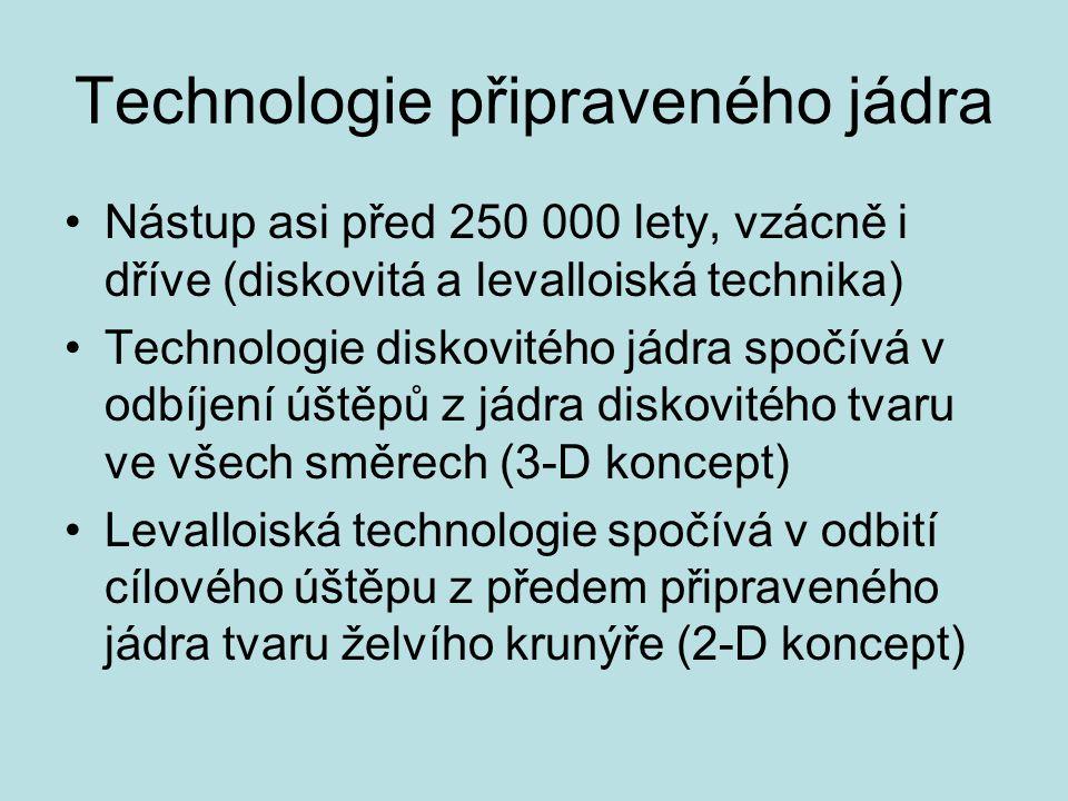 Technologie připraveného jádra Nástup asi před 250 000 lety, vzácně i dříve (diskovitá a levalloiská technika) Technologie diskovitého jádra spočívá v