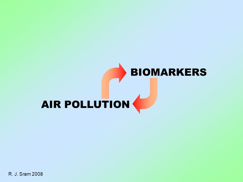 R. J. Sram 2008 BIOMARKERS AIR POLLUTION