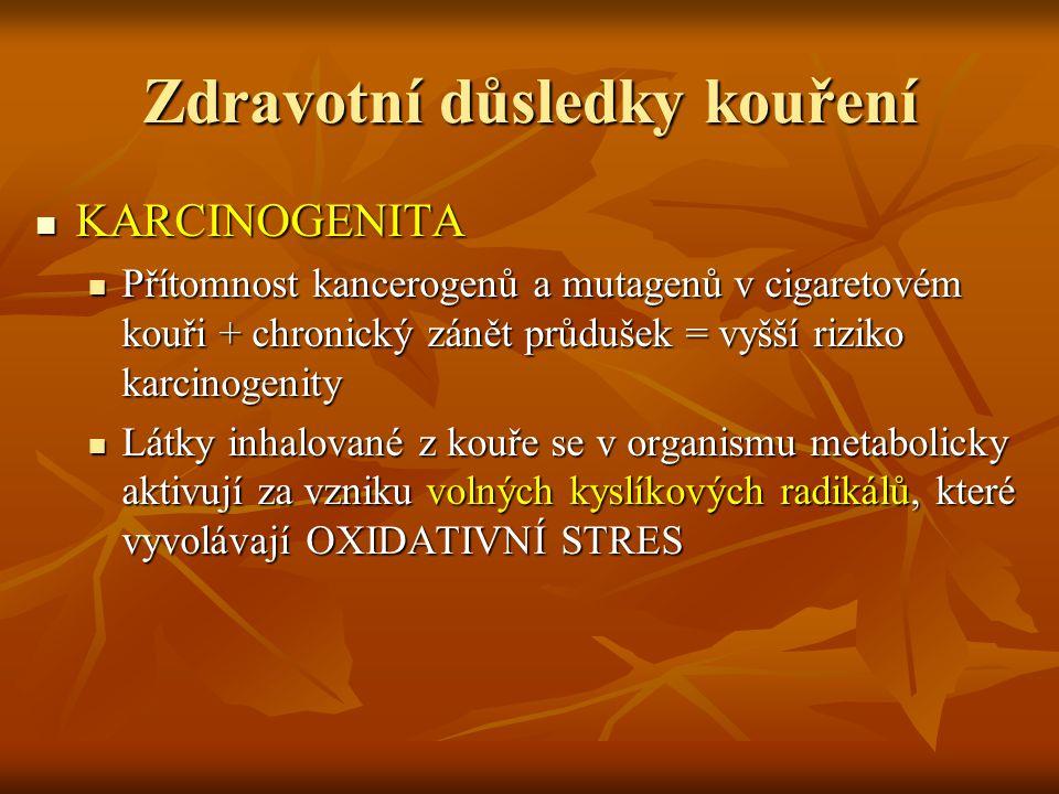 Zdravotní důsledky kouření KARCINOGENITA KARCINOGENITA Přítomnost kancerogenů a mutagenů v cigaretovém kouři + chronický zánět průdušek = vyšší riziko
