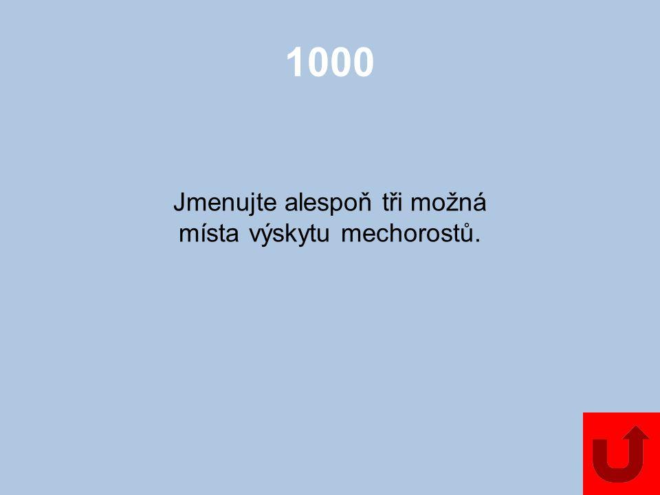 Mechorosty NahosemennéJednoděložné 1000 2000 3000 4000 5000 1000 2000 3000 4000 5000 2000 3000 4000 5000 KapraďorostyDvouděložnéZajímavosti 1000 2000