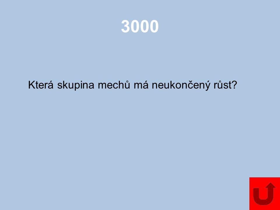 3000 Která skupina mechů má neukončený růst?