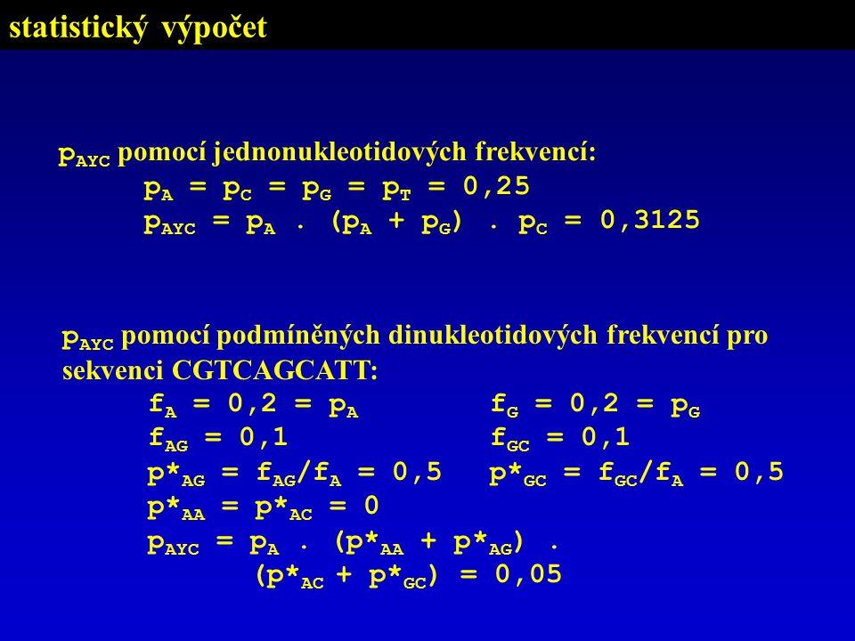 p AYC pomocí podmíněných dinukleotidových frekvencí pro sekvenci CGTCAGCATT: f A = 0,2 = p A f G = 0,2 = p G f AG = 0,1f GC = 0,1 p* AG = f AG /f A = 0,5 p* GC = f GC /f A = 0,5 p* AA = p* AC = 0 p AYC = p A.