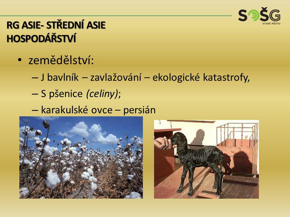 zemědělství: – J bavlník – zavlažování – ekologické katastrofy, – S pšenice (celiny); – karakulské ovce – persián RG ASIE- STŘEDNÍ ASIE HOSPODÁŘSTVÍ