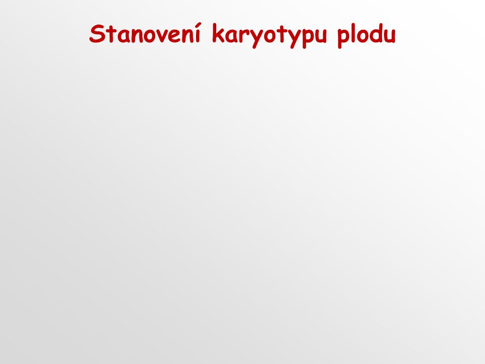 Stanovení karyotypu plodu