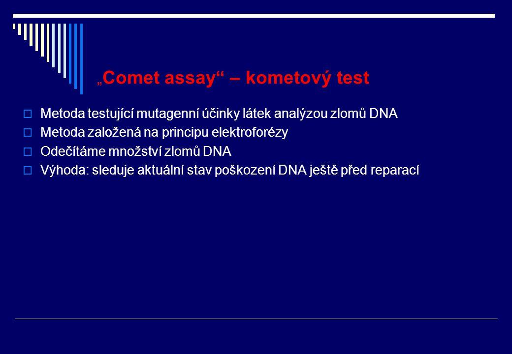 """Provedení """"comet assay  Aplikace testované látky laborator."""