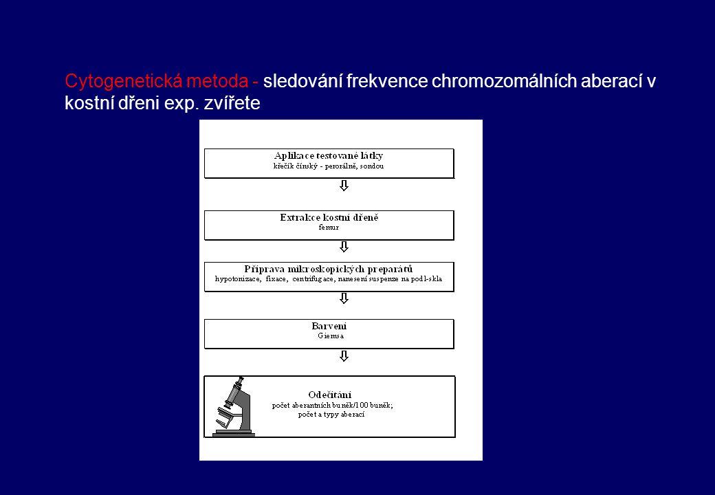 Vyšetření lidských periferních lymfocytů Vystavení lidských periferních lymfocytů dárce in vitro testované látce v průběhu kultivace zpracování buněk cytogenetickou metodou (kolchicin, hypotonie, fixace), příprava preparátů, barvení hodnocení počtu aberantních buněk, typů aberací Nebo u osob vystavených mutagenům (in vivo) – kultivace periferních lymfocytů – zpracování cytogenetickou metodou, barvení hodnocení počtu aberantních buněk, typů aberací Hodnoceno 100-200 buněk