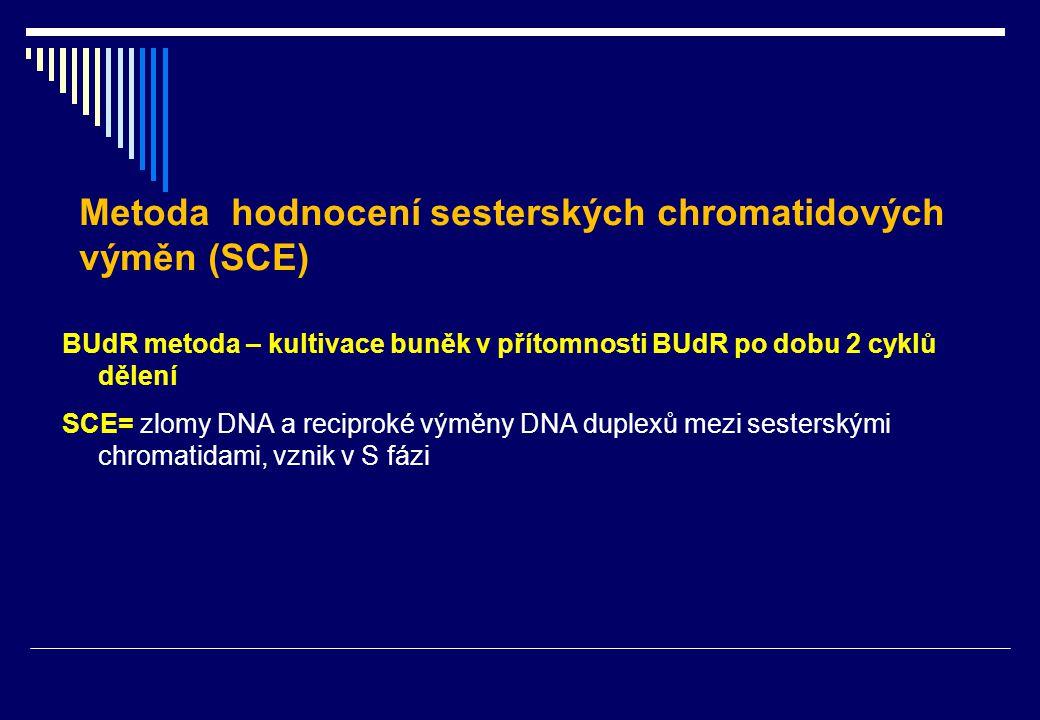 BUdR metoda – kultivace buněk v přítomnosti BUdR po dobu 2 cyklů dělení SCE= zlomy DNA a reciproké výměny DNA duplexů mezi sesterskými chromatidami, vznik v S fázi Metoda hodnocení sesterských chromatidových výměn (SCE)