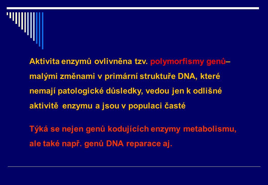 v Prokarcinogen Metabolic.aktivace enzymy I.fáze Ultimativní karcinogen Normální buňka Iniciovaná buňka Preneoplastické buňky Nádor Detoxikace enzymy II.fáze Iniciace 1-2 dny Promoce  10 let Progrese  1 rok Iniciačně promoční teorie vzniku nádorů Mutace, ztráta heterozygosity Podpora proliferace - negenotoxické karcinogeny + ev.mutace Genomová nestabilita, akumulace dalších genetických a epigenetických změn