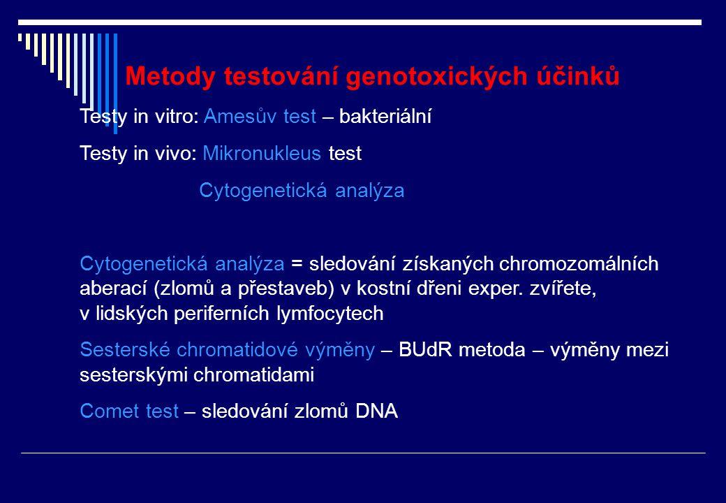 Princip Amesova testu Kmeny Salmonella typhimurium (TA98,TA100) nesou mutaci v genu pro syntézu histidinu Nejsou schopny tvořit histidin z dostupných živin; jsou auxotrofní - nerostou v mediu bez histidinu Pouze bakterie, které prodělaly reverzní (zpětnou) mutaci vytvoří kolonie
