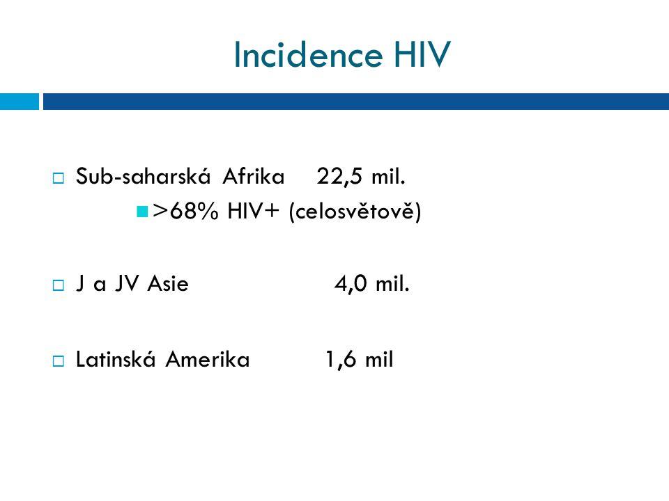 Incidence HIV  Sub-saharská Afrika 22,5 mil.>68% HIV+ (celosvětově)  J a JV Asie 4,0 mil.